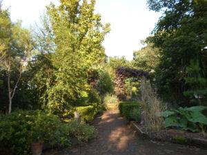 Chelsea Physics Garden, London