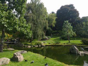Holland Park: Kyoto Garden.