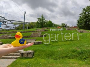 Kleine gelbe EU-Ente im ZDF Fernsehgarten ...