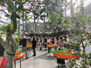Gemeinsam Kimchi herstellen (GUM, Botanischer Garten).